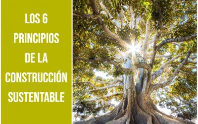 Los 6 principios de la construcción sustentable